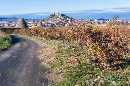 rioja: Vineyard, San Vicente de la Sonsierra as background, La Rioja, Spain