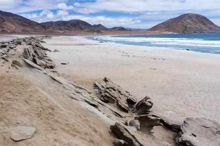 Pan de Azucar national park, Chile