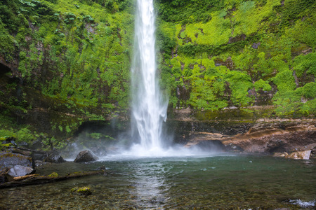 laurel mountain: Salto El Claro waterfall, Pucon, Chile