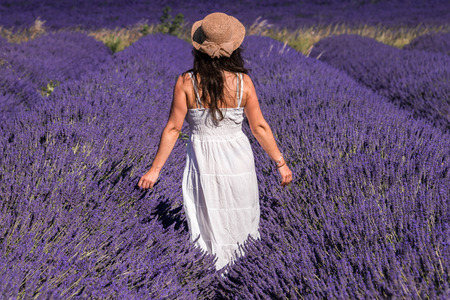 Woman in a lavender field in Valensole plateau, Provence, France