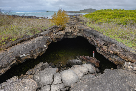 Lava Tunnel, Known as Tunel del Estero, Isabela Island, Ecuador Stock Photo