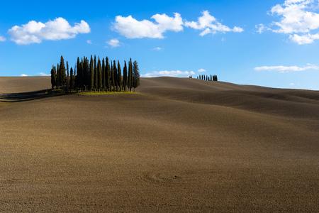 Landscape wth cypress trees near San Quirico dOrcia, Tuscany, Italy 免版税图像