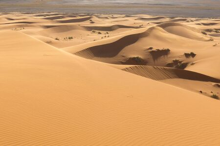 Dunas de arena en el desierto del Sahara, Merzouga, Marruecos