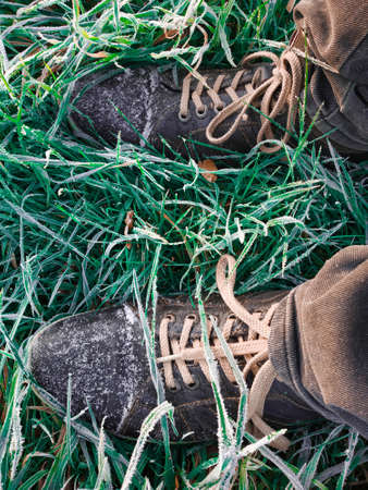 Lee cooper shoes standing amongst early morning frost covered fresh green grass 写真素材