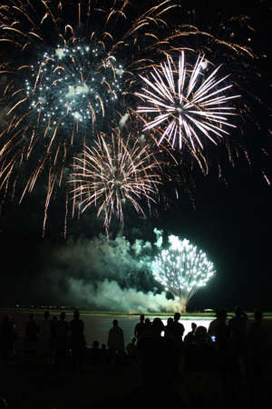 Fireworks Stock Photo - 14291225