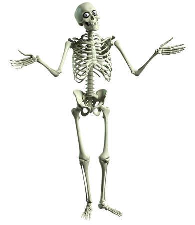 3d cartoon skelet