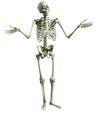 skeleton cartoon: 3d cartoon skeleton