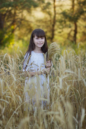 Cute girl in a white dress with spikelets of wheat stands in a field of ripe rye in the sunset light.