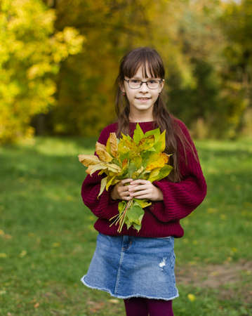 A beautiful girl in a red sweater holds autumn leaves. Cute girl poses in the autumn forest