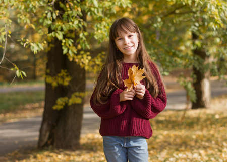 Adorable girl smiles. The teenager holds an armful of leaves at the autumn park. Reklamní fotografie