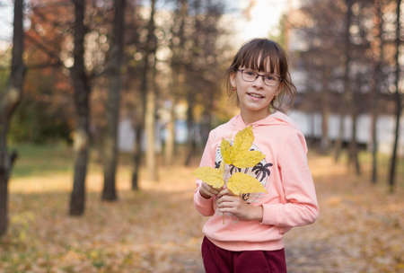 Adorable girl in smiles. The child holds leaves at the autumn park. Reklamní fotografie