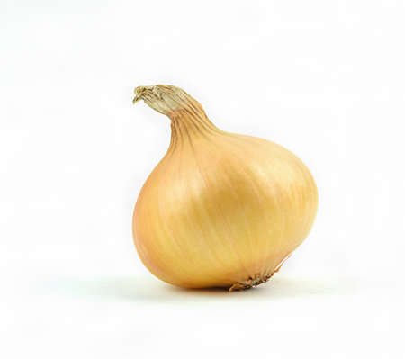 One natural onion isolated on white background. Reklamní fotografie