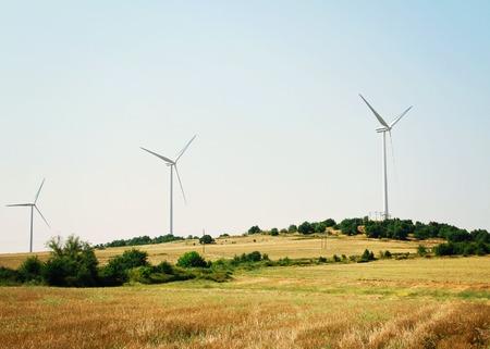energy production: Windmill farm, Wind energy production, green energy