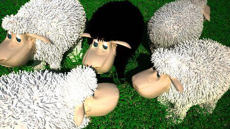mouton noir:
