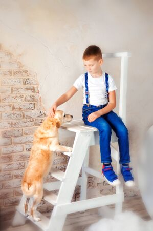 6 years old boy in blue shoes, blue jeans and suspender and white t-shirt sit on white wooden ladder with his golden dog. Child petting his dog. Dreamy childhood in clouds. Child and dog friendship Banque d'images