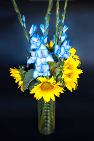 Vertical picture of beautiful bouquet of blue gladioli and flowers of sunflower, glass vase of flowers on black background. Summer bouquet of sunflowers