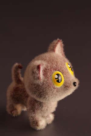 kitten with big eyes
