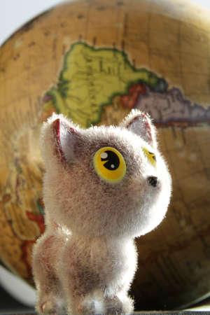 kitten looks at the world with big eyes 免版税图像