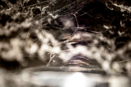freaking: Spider web and fiber glass in basement.