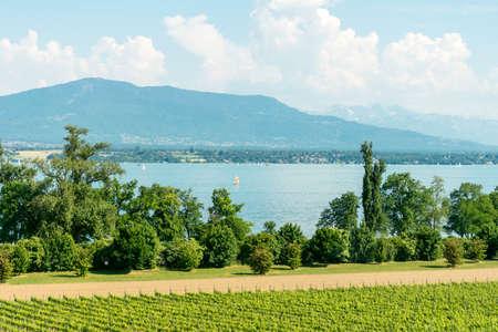 leman: View over Lac Leman.