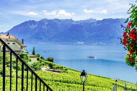 heritage site: The UNESCO world heritage site of the Lavaux Vineyards near Lausanne in Switzerland.