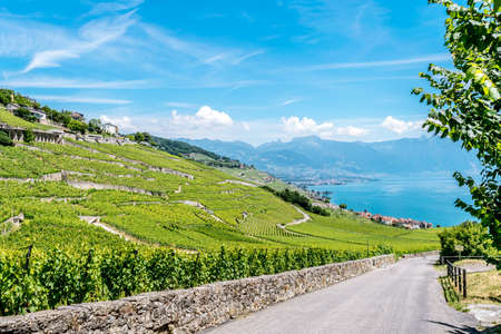 heritage site: The UNESCO world heritage site of the Lavaux Vineyards near Montreux in Switzerland.