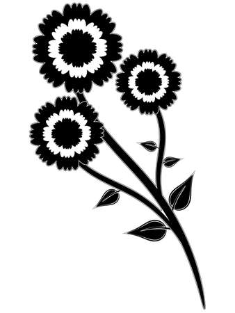 Nice black silhouette of three flowers on stem photo
