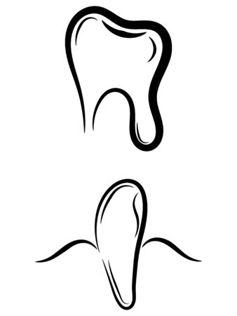 Teeth silhouette - molar tooth and eyetooth Illustration
