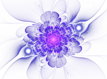 Cute abstract fractal flower on white background photo