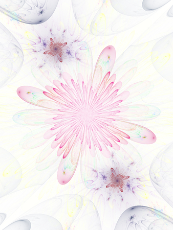 Colorful abstract fractal flowers on white background photo
