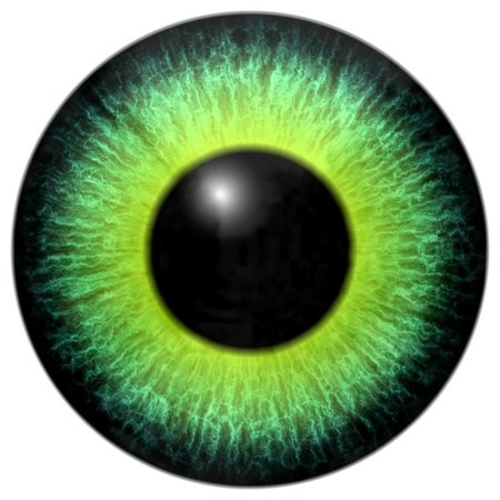 Eye for characters like a aliens, creatures, animals, people and so Stock Photo