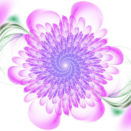 spire: Abstract fractal floral spiral on white background