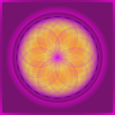 symmetric: Beautiful symmetric floral mandala in many colors