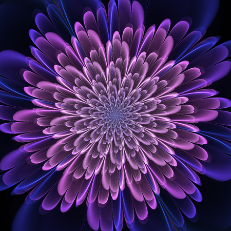 mauve: Fractal flower. Abstract fractal art in floral style. Mauve fractal petals. Fractal abstraction useful as wallpaper, print or anything else. Stock Photo