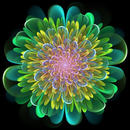 Fractal floral design with whorled spiral petals in blended color gradients on a black background