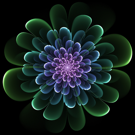 Retro style fractal flourish design with whorled spiral petals in blended color gradients on a black background