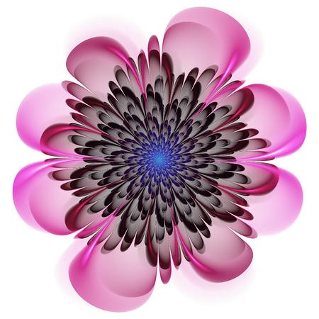 Abstract fractal art. Crazy fractal shapes on white background. Fractal flower. Stock Photo