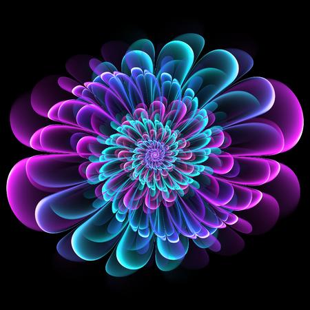 Symmetrical fractal floral design with whorled spiral petals in blended color gradients on a black background