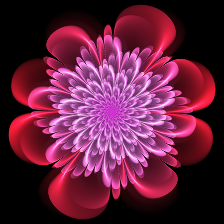 Retro style symmetrical fractal floral design with whorled spiral petals in blended color gradients on a black background
