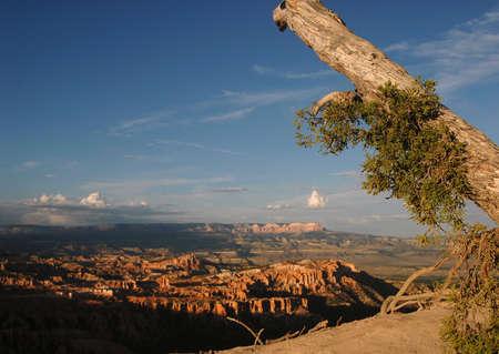 Bryce Canyon National Park panorama, Arizona, U.S.A.
