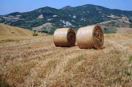 Hay bales in Northern Italy Stockfoto