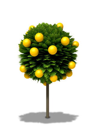 citrus tree: A stylized cartoon type standard orange tree with round shaped foliage and orange fruit on an isolated background