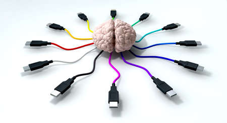 A human brain with multi-colored usb cable extending and reaching out from its center photo