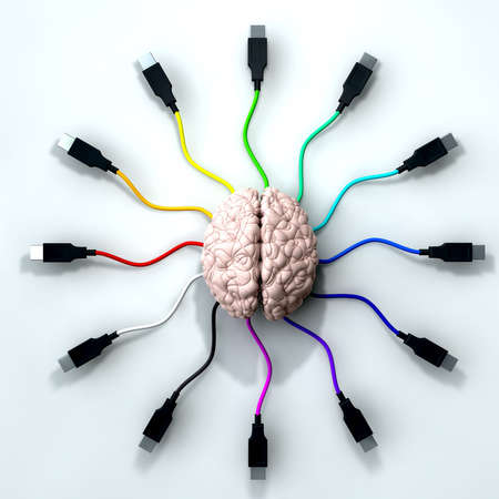 radiate: A human brain with multi-colored usb cable extending and reaching out from its center Stock Photo