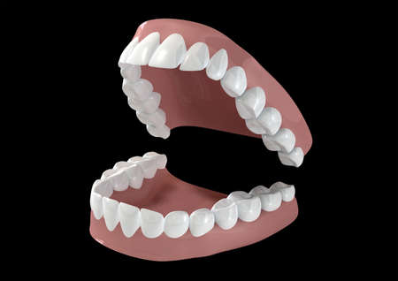 lower teeth: Seperated upper and lower sets of human teeth set in gums on a dark background