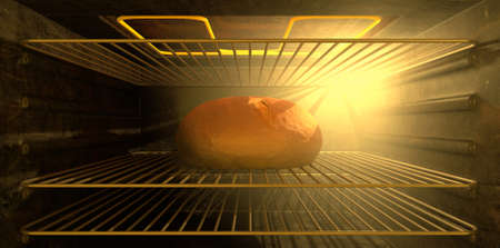 literal: A literal description of the pregnancy term with a bread bun baking in an oven as seen with the door open