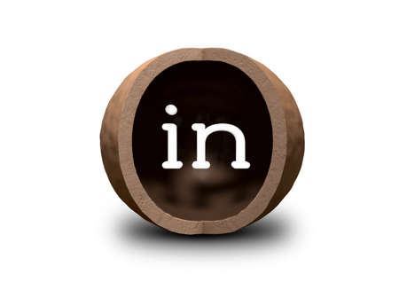 A hollowed out macadamia nut shell with a quarter segment cut away and the word in on the inside Stock Photo - 14582720