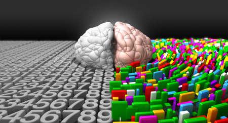 structured: Un cerebro ordinario con la parte izquierda representa una mente anal�tica, estructurada y l�gica, y el lado derecho representa a un lado dispersa, creativa y colorida.