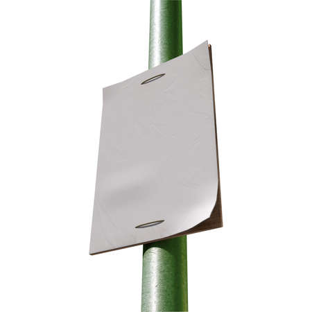 affix:  A perspective view of a street pole with a blank weathered newspaper headline page attached to it Stock Photo