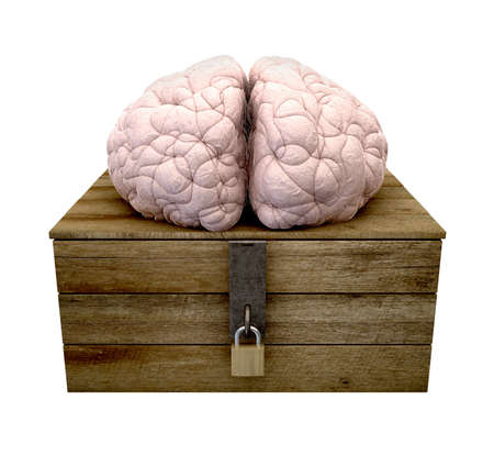 hasp: A rough wooden planked box with a lid on hinges locked by a brass padlock and a hasp with a regular brain perched on top on an isolated background